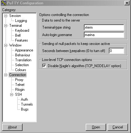 Fading into White Noise - SSH Tunneling Under Windows (TM)